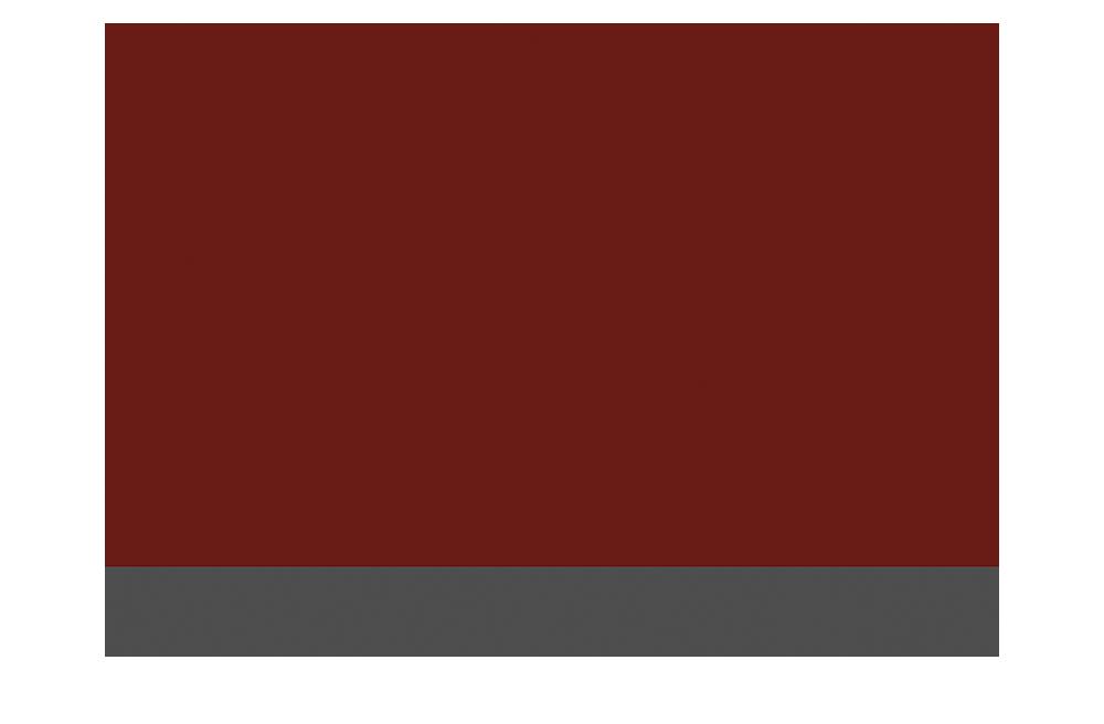 HSS_Logo_3